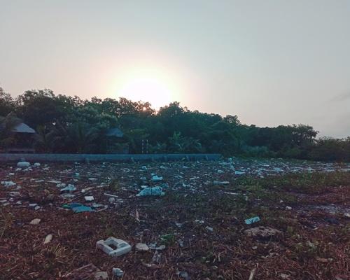 Ruộng rác